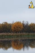 Autumn colors, Angarn, Sweden, reflection, lake, autumn colors, trees