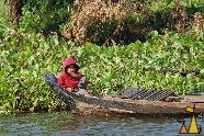 Child in a boat, Cambodia, child, boat, Homo sapiens