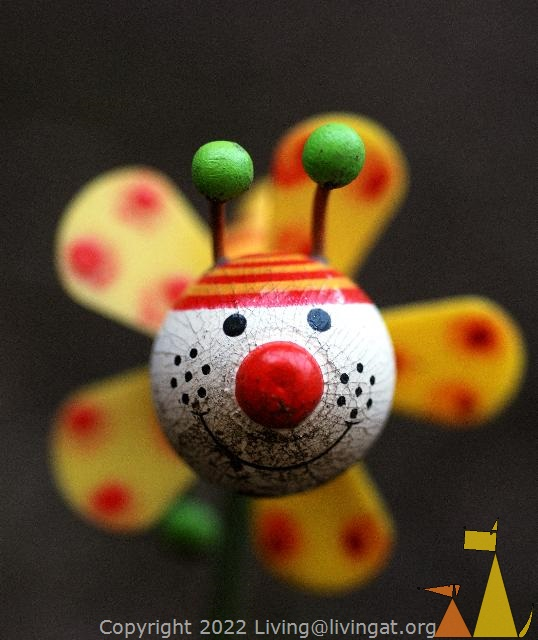Colorful, Skeppargatan, Stockholm, Sweden, skeppargatan 11, bee, macro, toy, colorful