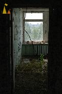 Growing forest, Pripyat, Ukraine, hotel, room, growing forest, nature taking over