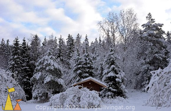 Guesthouse in Snow, Landet, Sweden, snow, guesthouse, house, forest, trees