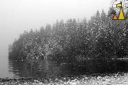 Icy Waters, Landet Sweden, water, fog, mist, forest, black and white