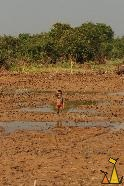 Muddy child, Cambodia, mudd, child, Homo sapiens
