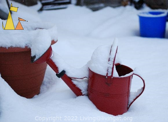Watering can, Skeppargatan, Stockholm, Sweden, skeppargatan 11, watering can, bucket, red, blue, snow